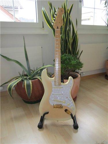 Fender Stratocaster Richie Kotzen